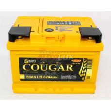 42017 COUGAR Аккумуляторная батарея Power Евро (LB2) 12V, 60Ah, 620A о/п (242x175x175 -/+)
